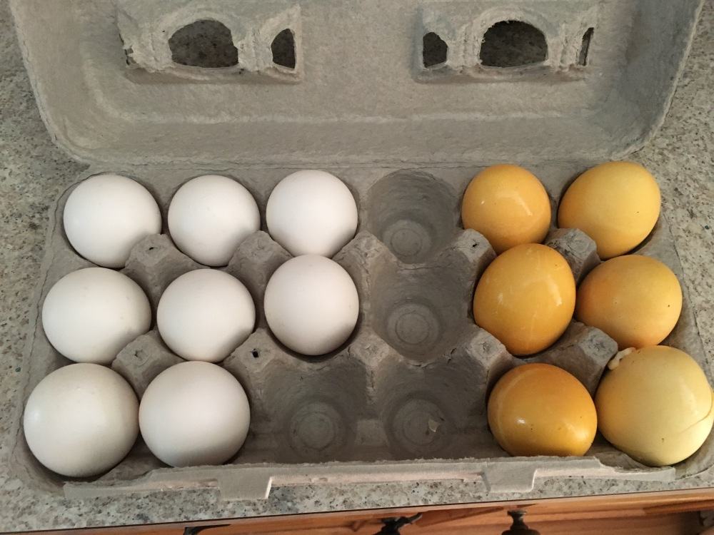 Hard Boiled Eggs Weekly Meal Prep