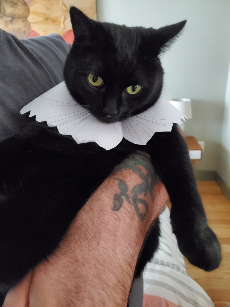 My black cat onyx with a paper collar to look like Ruth Bader Ginsberg's lace collar